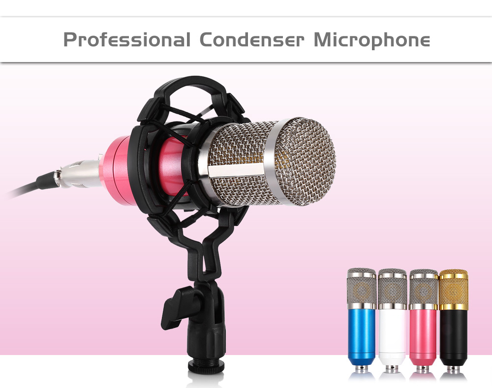 b800-mikrofon.jpg