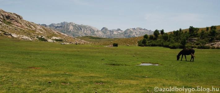 Franciaország_Korzika_a kalandozásszigete17.jpg