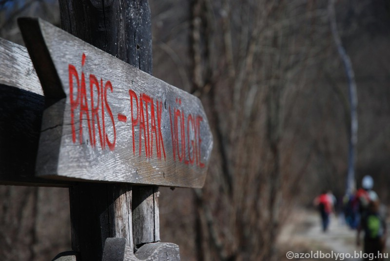 paris_patak_01.jpg