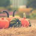 Itt van az ősz....