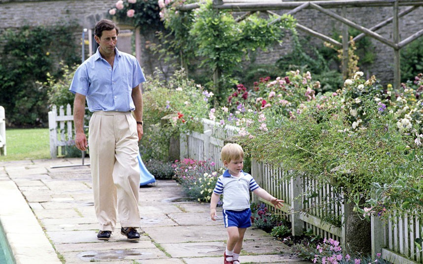 prince-charles-and-his-garden-at-highgrove-with-prince-harry.jpg