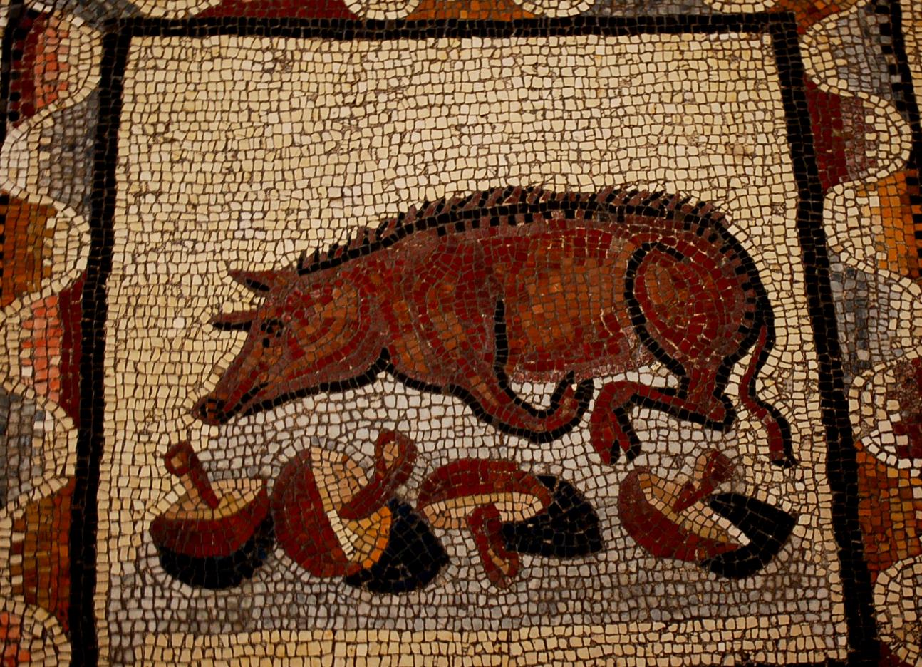 truffe_pig_ancient_roma.jpg