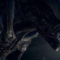 Alienek magángondozásban