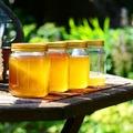 Tavaszi napokat megédesítő mézes italok