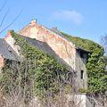 Évtizedek óta pusztulásban lévő malom egy arborétum szélén
