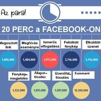 Gondoltad volna, hogy a Facebook látogatott?
