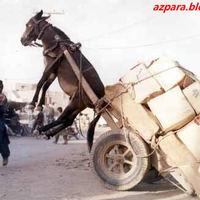 Eközben Afganisztánban...