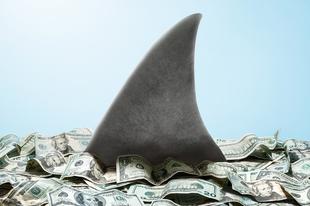 10 tipp, miként lehetsz az üzleti élet cápája