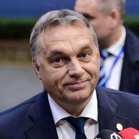 Le Monde: Orbánnak nincs ellenzéke és hihetetlen népszerű