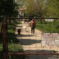 Beleveszik az alkotmányba az Orbán-család nyugalomhoz való jogát