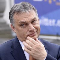 Orbán a vesztét érzi? – igazi ámokfutásba kezdett
