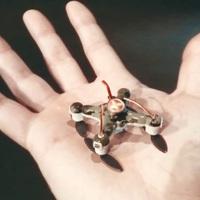 A gyilkos robotok betiltásáért indult kampány az Egyesült Államokban, Magyarországon lovas századot képzünk