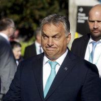 Már a legnagyobb szövetségese, a CSU is kifarolt Orbán mögül, a Néppártban többségbe kerültek a kizárás mellettiek
