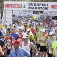 Az egyszeri budapesti küzd a parkoló- és illemhelyért