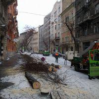 Ilyen volt, ilyen lett: kivágták a Semmelweis utcai fasort