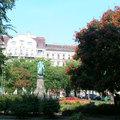 A Fidesz egyik fő ellenségei a fák - rögtön az emberek után