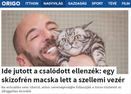 origo_skizofren_macska.png