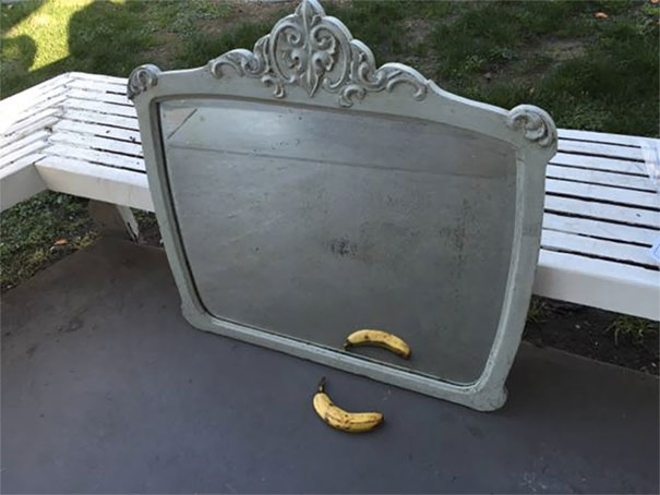 funny-people-sell-mirrors-reflections-78-5ab4e2a3a11c8_605.jpg