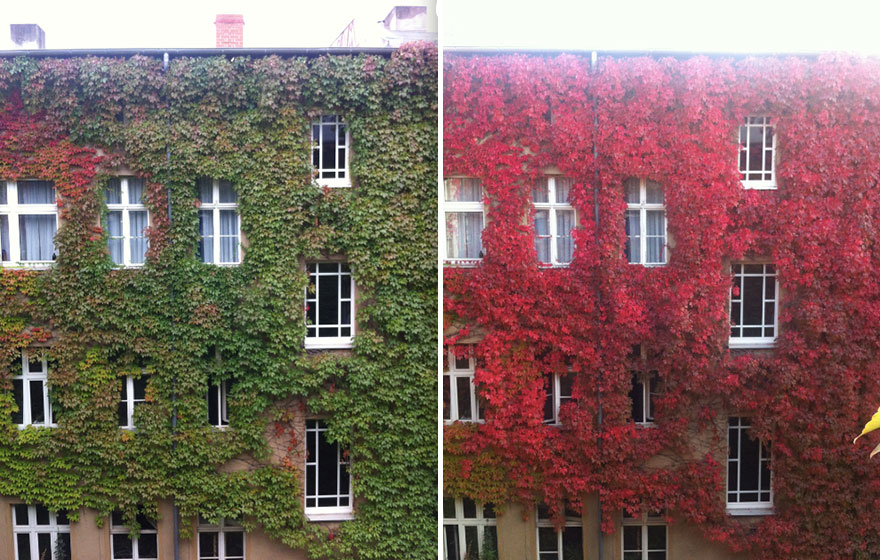 same-place-different-season-before-after-4.jpg