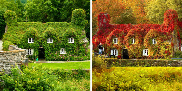 same-place-different-season-before-after-fb_700.jpg