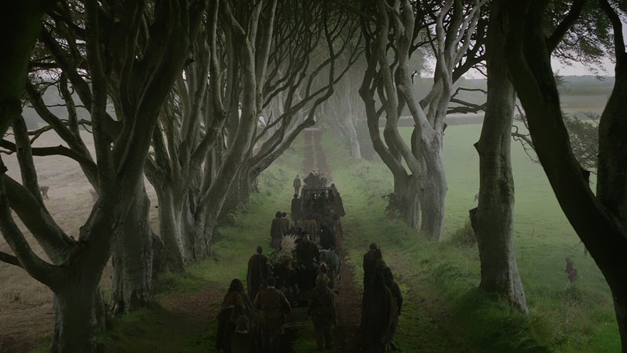 the-dark-hedges-tree-tunnel-w1200h800.jpg