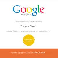 Google Analytics Individial Qualification (IQ)