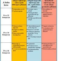 A baba fejlődési szakaszai (31-36 hónapos korig)