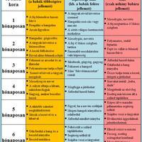 A baba fejlődési szakaszai (1-6 hónapos korig)