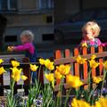 Húsvét Lillával és egy kőkemény nap krónikája