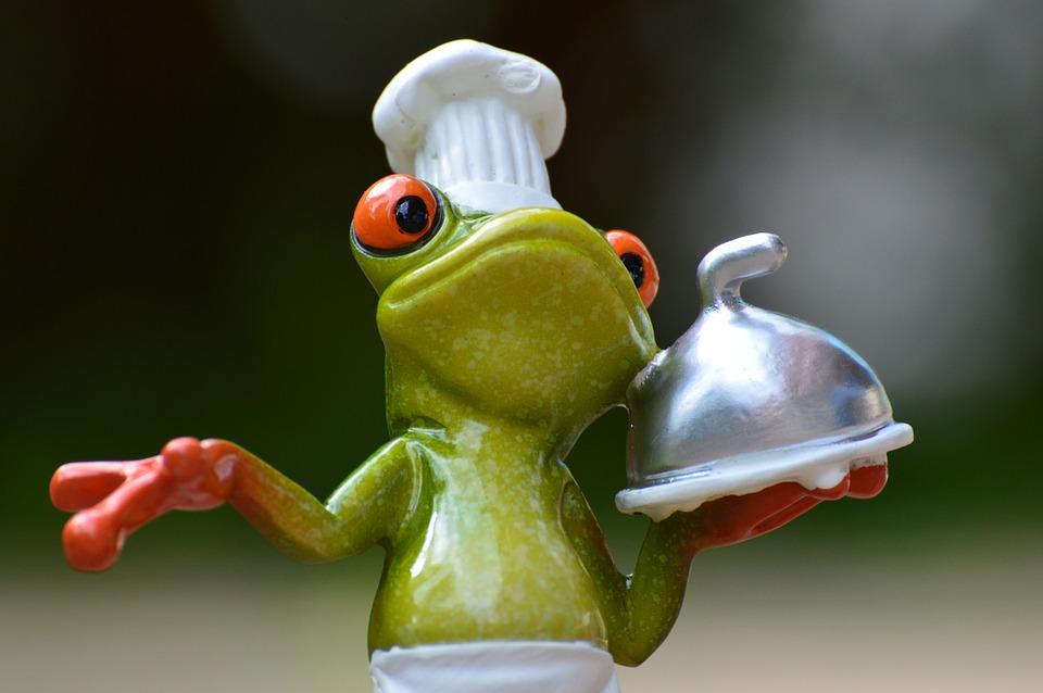 frog-927768_960_720.jpg