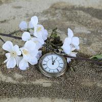 Fogadalmak, és azok megbukásának ideje
