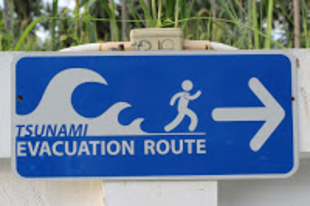 A tsunaminak nevezett hiszti