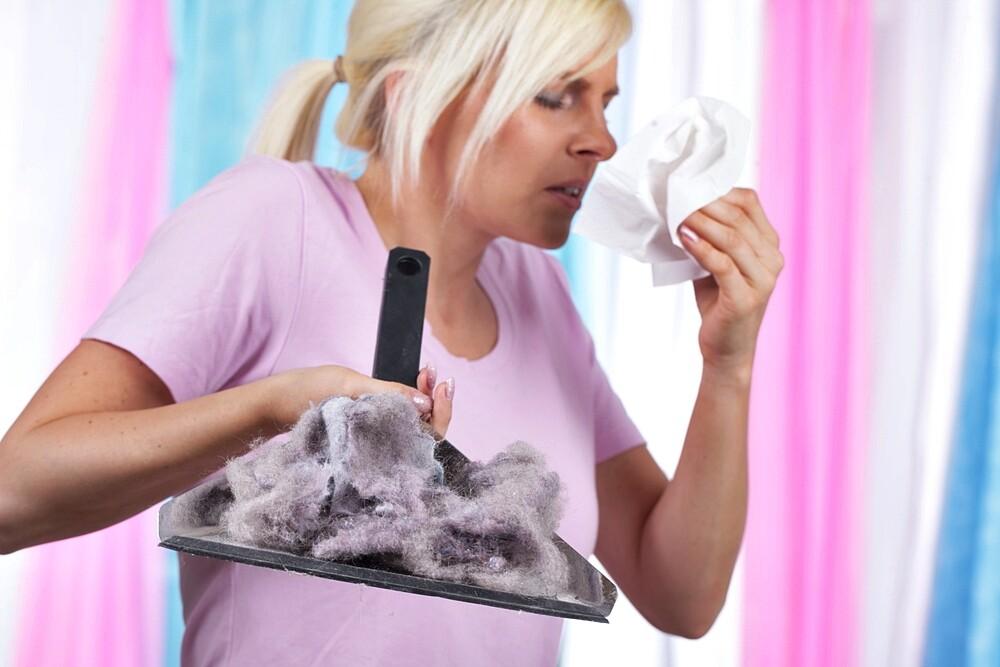 house-dust-allergy.jpg