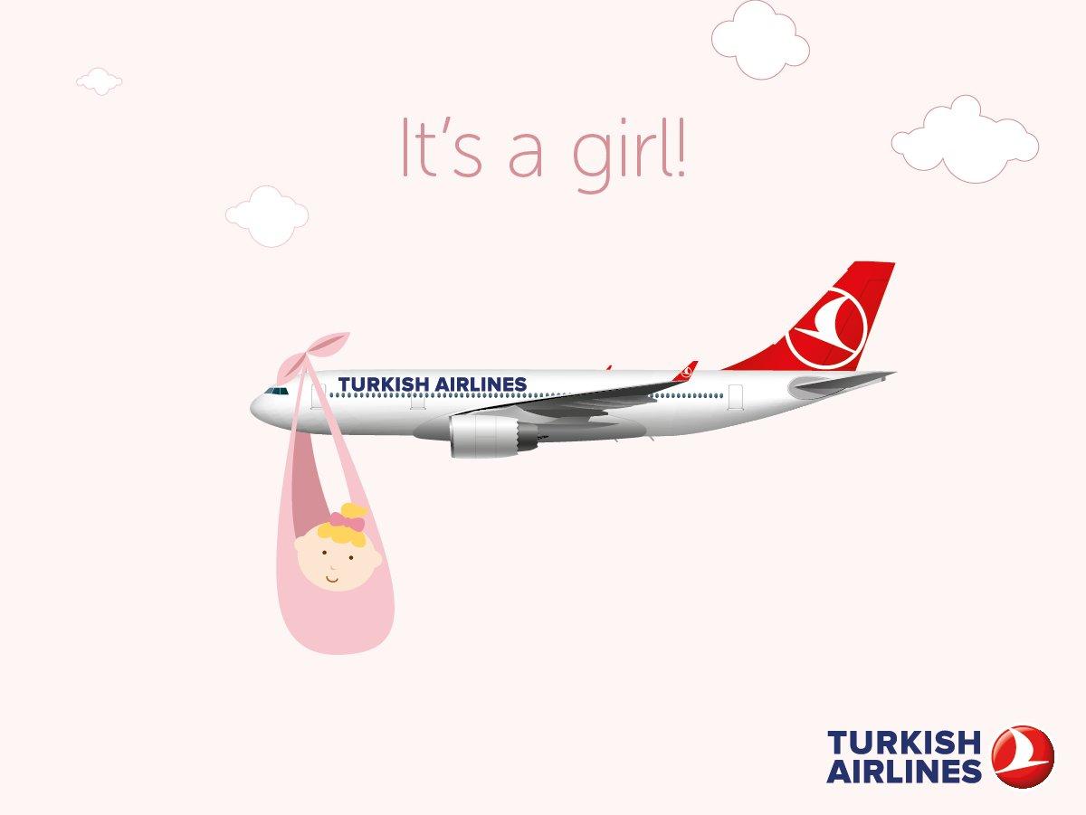 baby_chameleon_turkish_airlines.jpg