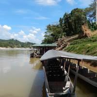 Dzsungeltúra Malajziában