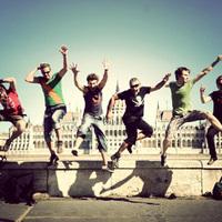 A Rézfaszú Bagoly is inspirálja őket - Anselmo Crew kedvencei