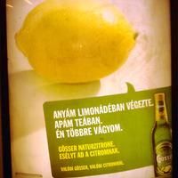 Egy citrom élete