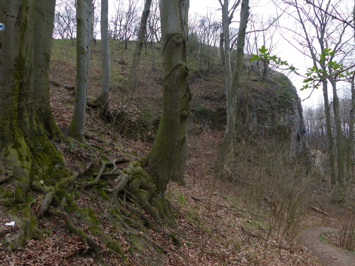 A Zsigmond-kő sziklái hátulnézetben. A jobb oldalon látható csapáson kapaszkodtunk fel idáig a Lófő-völgyben.