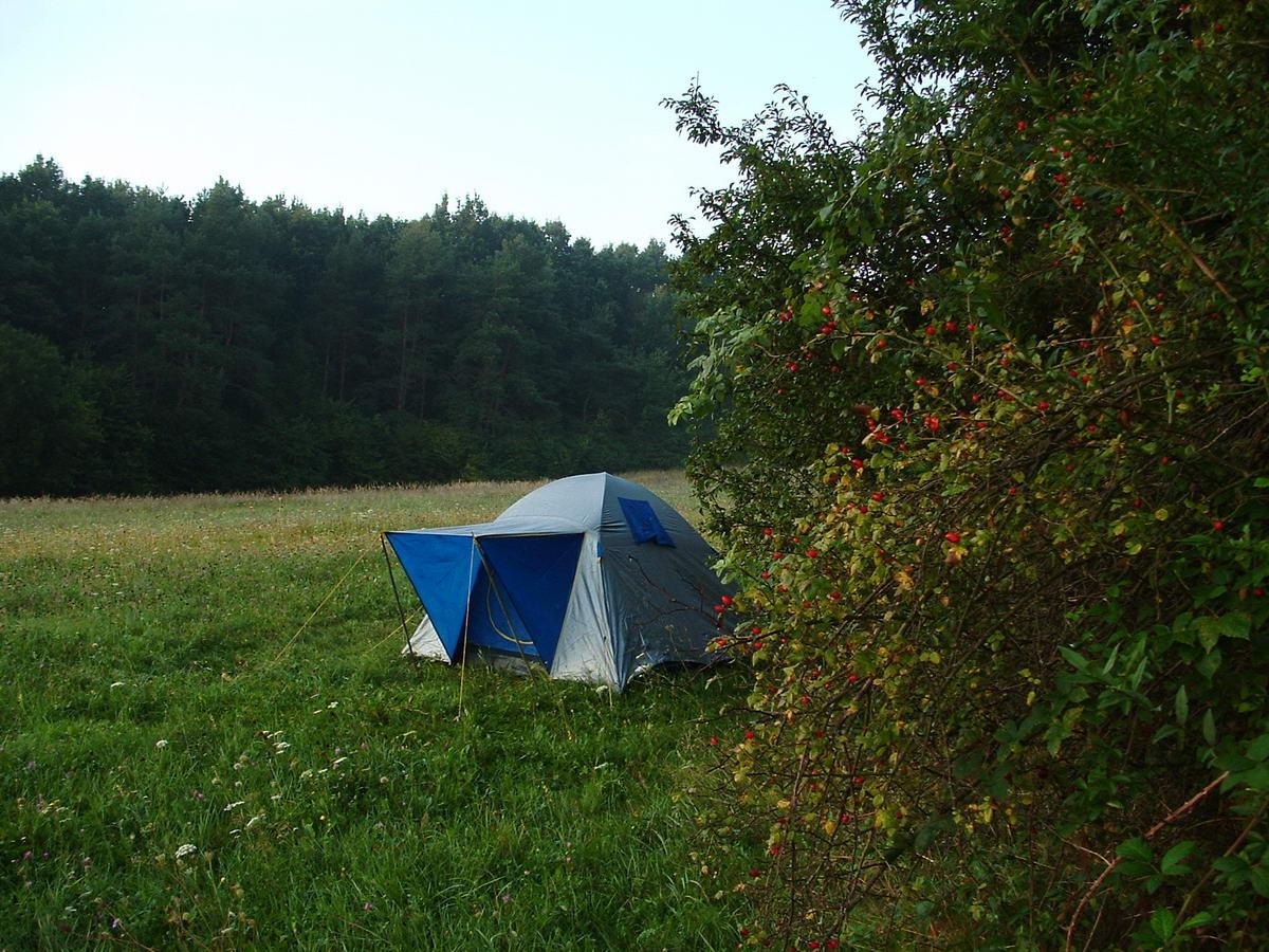 A sátort a Dél-dunántúli Kéktúrát járva egy Felsőszenterzsébet melletti kaszálón ütöttem fel