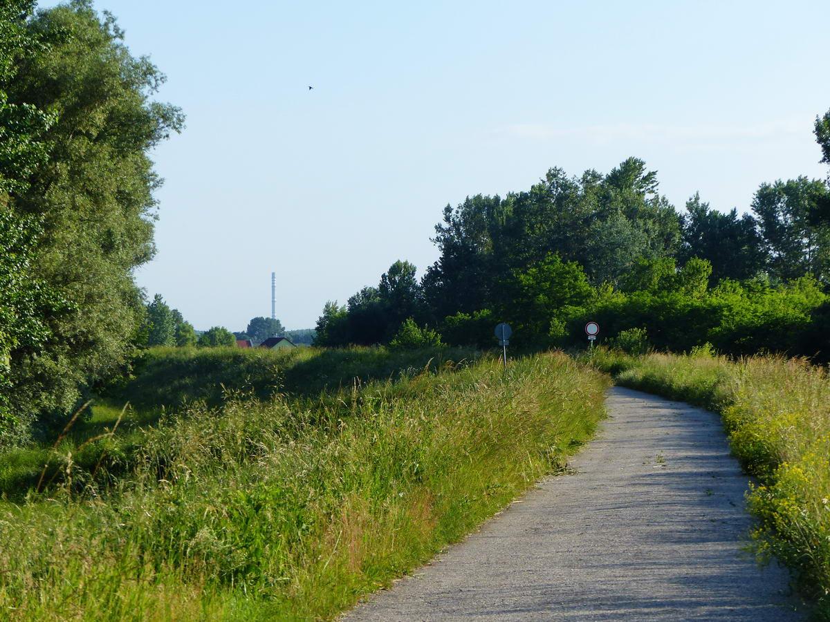 A távolban feltűnt előttem a Tisza II. Erőmű 200 méteres betonkéménye...