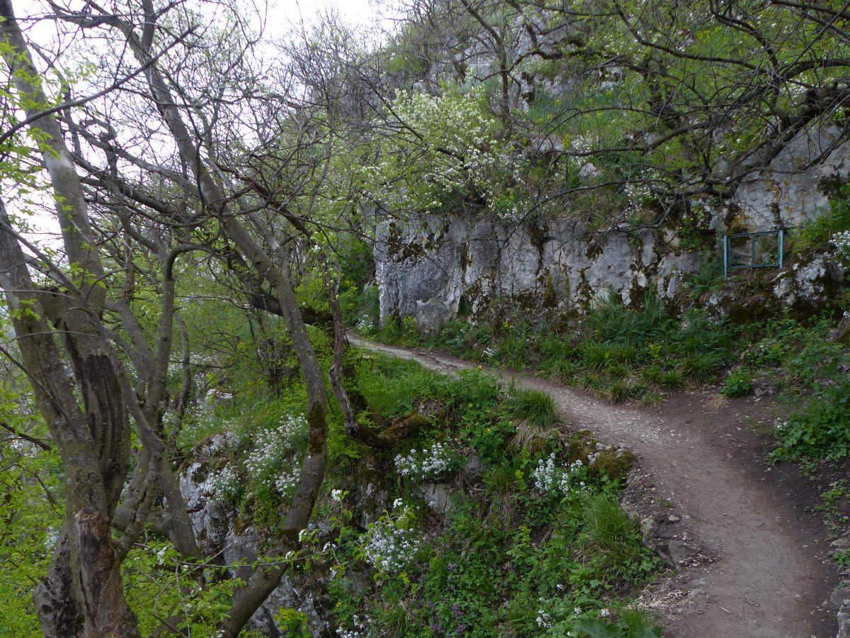 A Szelim-barlanghoz vezető kanyargós, szintező ösvény