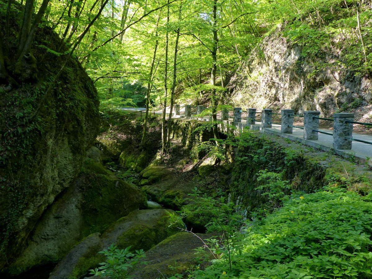 Az Apát-kúti-patak által vájt mély kanyon mellett vezet az aszfaltút