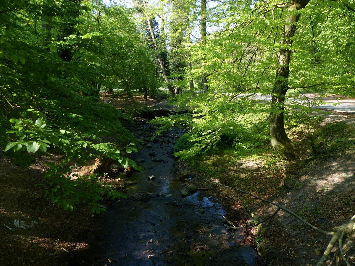 Az Apát-kúti-patak a fűvészkertnél