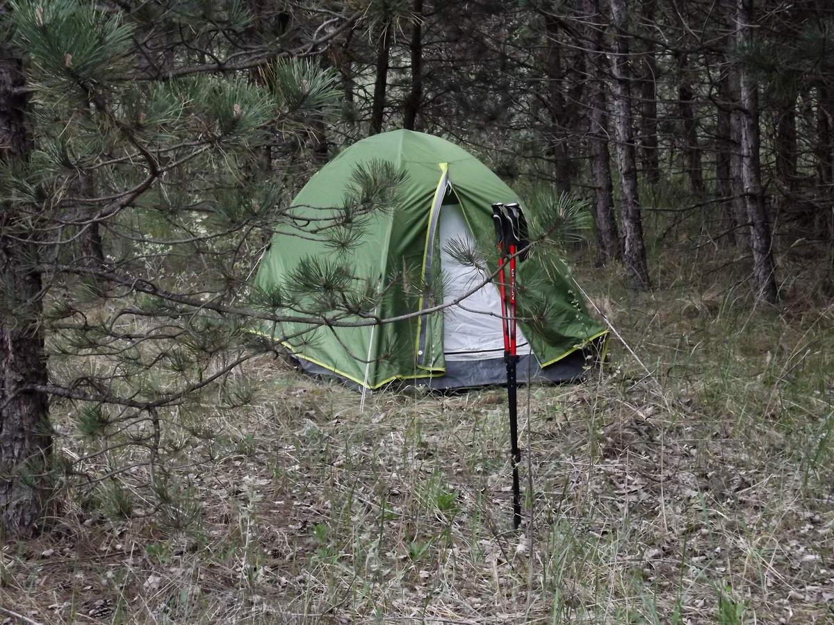 Erdőszéli sátorozás az Alföldi Kéktúrán Rúzsától nem messze