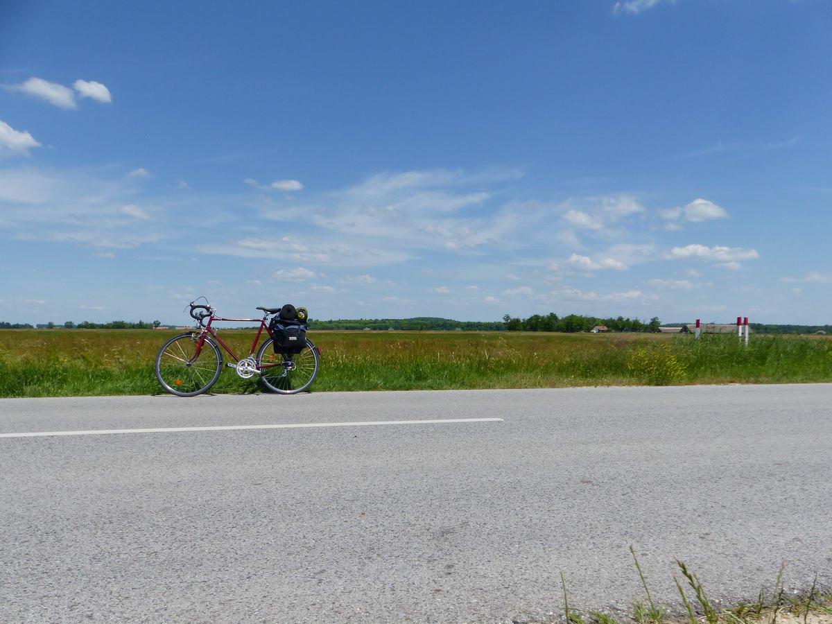 Pihen a bringa az országút szélén
