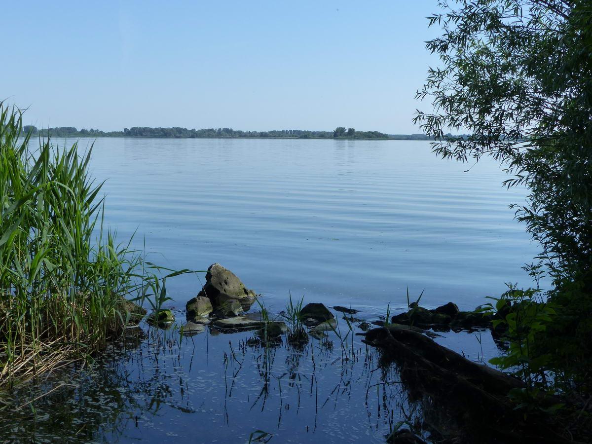Kilátás a Tisza-tóra a Kisköre és Abádszalók közötti kerékpárútról