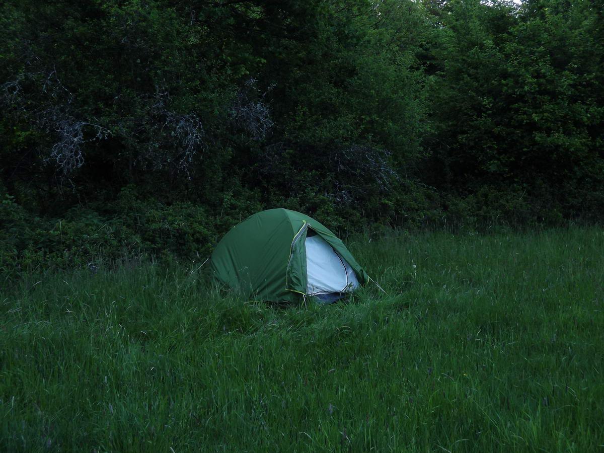 Hajnal egy kaszálón a Lugos-patak völgyében