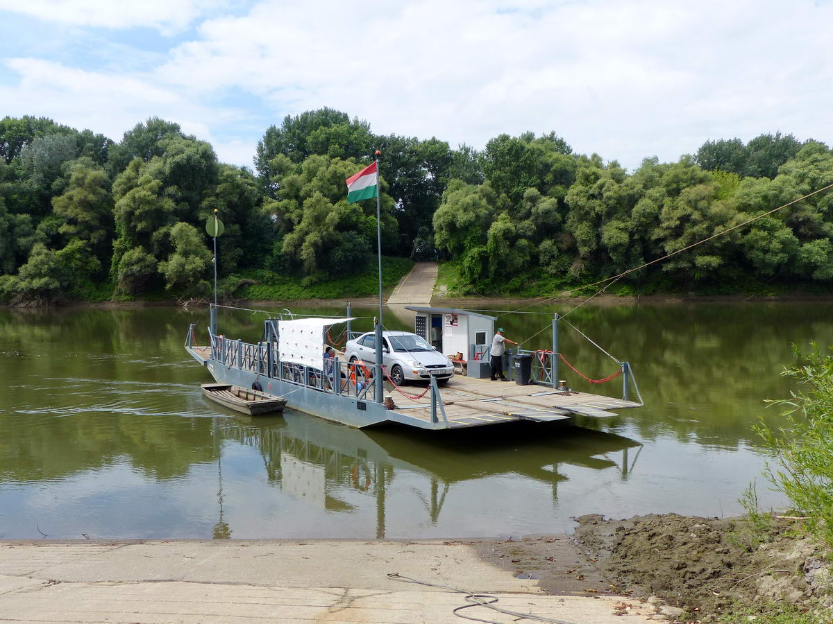 Érkezik a komp a Tisza Tiszasüly felőli partjáról