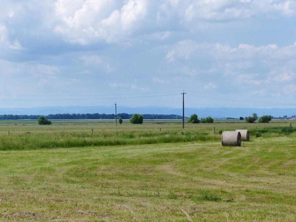 Jól látszik a Tiszadorogma és Tiszabábolna közötti országútról a Bükk vonulata