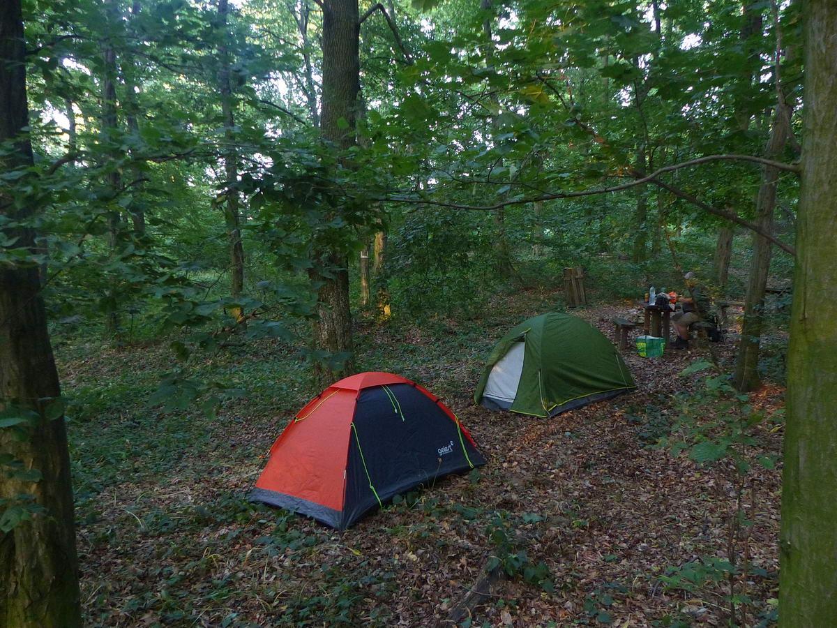 Amikor nem vagyok egyedül. Itt egy nagyon kedves ismerősömmel sátorozok Bakonycsernye felett a Csiklingvár erdei pihenője mellett.